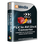 4Media FLV to AVI DivX Converter