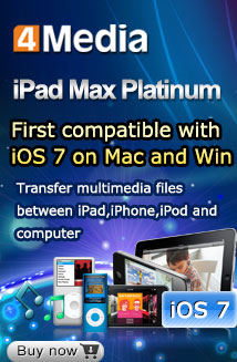 iPad Max Platinum