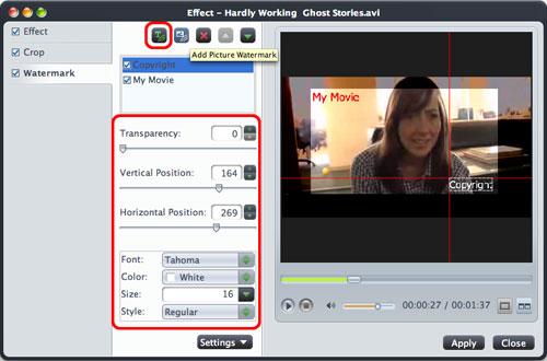 DivX to DVD Mac Converting