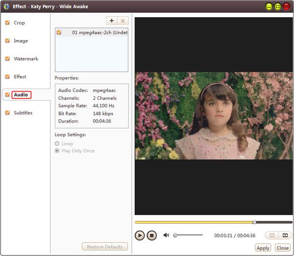 add subtitle to mp4